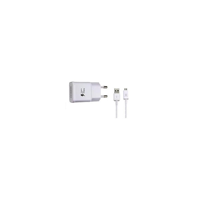 SAMSUNG CARICABATTERIE EP-TA20EWEC FAST CHARGER + CAVO USB CON BLISTER